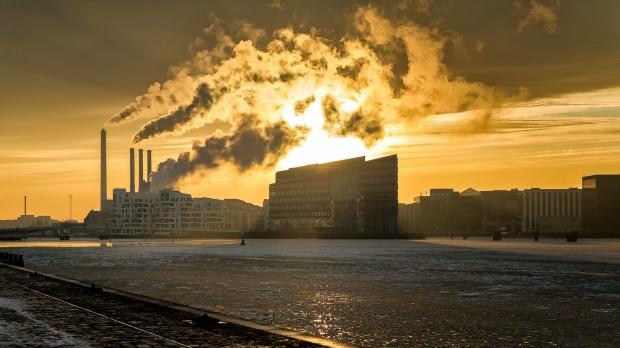 Økosystemet: Overforbruget fortsætter. Hvad så?