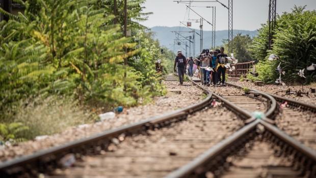 Thomas Gammeltoft-Hansen om flygtninge: Langt størstedelen af dem, der er kommet i år, har krav på asyl