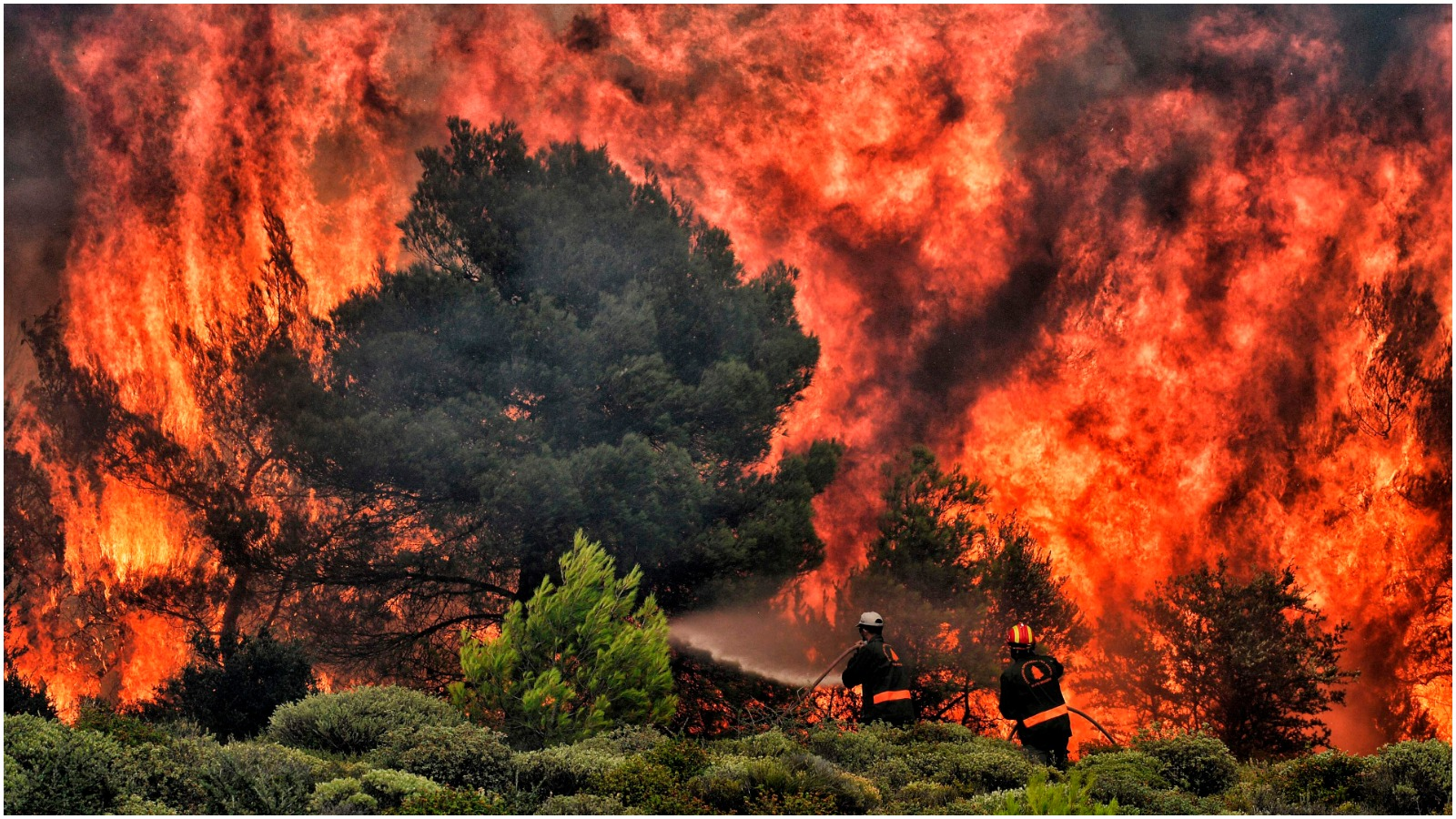 Maria Reumert Gjerding (DNF): Tørken og varmen fortæller os, at forandringerne i klodens klima er i fuld gang