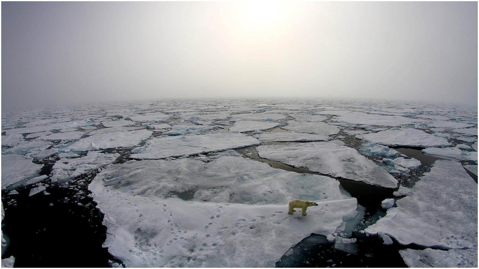 Peter Bjerregaard i RÆSON35: Hvorfor har vi ikke taget klimaet alvorligt?