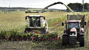 <font color=00008>Otto Brøns-Petersen:</font color=00008> Erhvervsstøtten gør mere skade end gavn – selv i landbruget og den grønne omstilling