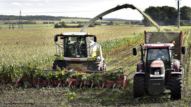 Otto Brøns-Petersen: Erhvervsstøtten gør mere skade end gavn – selv i landbruget og den grønne omstilling
