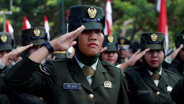 Professor Donald Weatherbee: Indonesiens rolle som udenrigspolitisk leder i Sydøstasien er ophævet