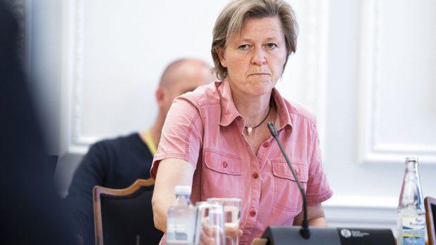 Niels Jespersen: Folketingets protestpartier er i krise – og de får svært ved at rejse sig, før magtpartierne kvajer sig igen