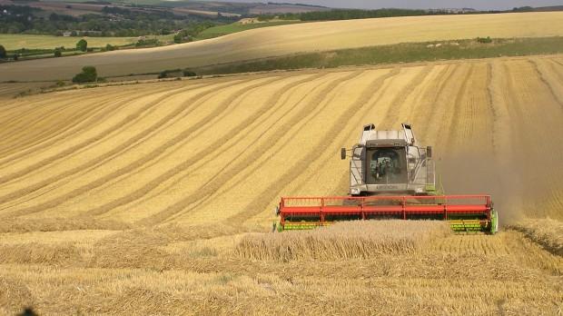 Maria Reumert Gjerding: Vi har brug for et landbrug, som fylder mindre men yder mere til samfundet