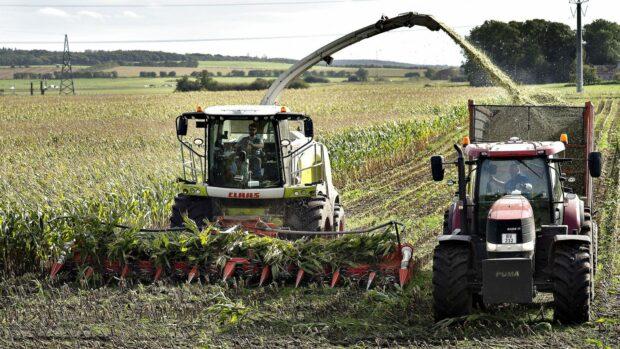 Kristian Sloth: Landbruget er en elendig forretning for det danske samfund