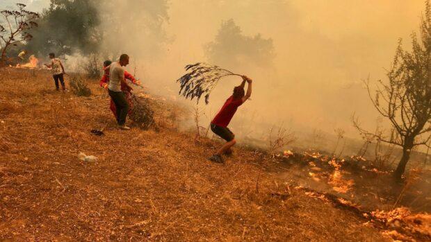 Forsker bag klimarapport Robert Kopp: Det vigtigste og mest omkostningsfulde bliver klimaforandringernes effekt på menneskelig sundhed